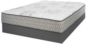 IAmericaDemocracy Plush Queen Mattress