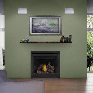 Napoleon FireplacesAscent Series Direct Vent Clean Face LP Gas Fireplace (Millivolt)