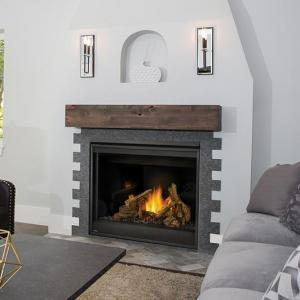 Napoleon FireplacesAscent 42 Direct Vent LP Gas Fireplace (Electronic)