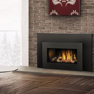 Napoleon FireplacesRoxbury Direct Vent Gas Fireplace Insert
