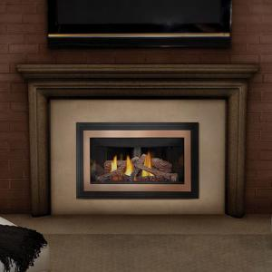 Gas Fireplace Insert Direct Vent Fireplaces Fireplaces