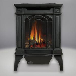 Napoleon FireplacesArlington Direct Vent Cast Iron Gas Stove (Black)