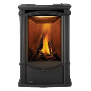 Napoleon FireplacesCastlemore Direct Vent Cast Iron Gas Stove - Metallic Black