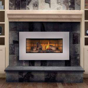 Napoleon FireplacesRoxbury Gas Fireplace Insert