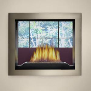 Napoleon FireplacesHigh Definition See Thru Direct Vent Gas Fireplace