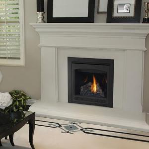 Napoleon FireplacesAscent Series Direct Vent Clean Face Gas Fireplace (Millivolt)
